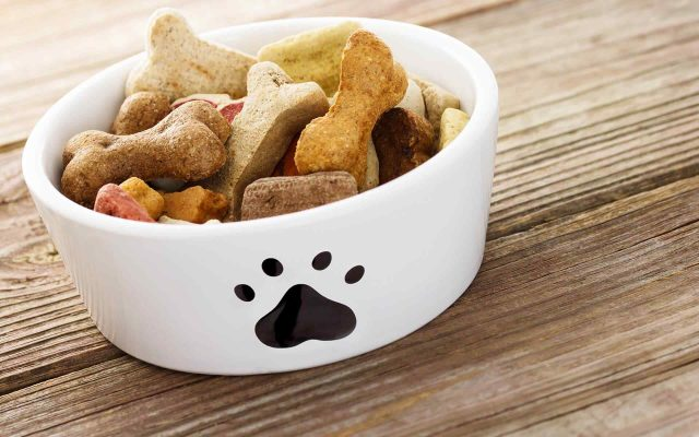 14 Foods You Can Share with Your Dog